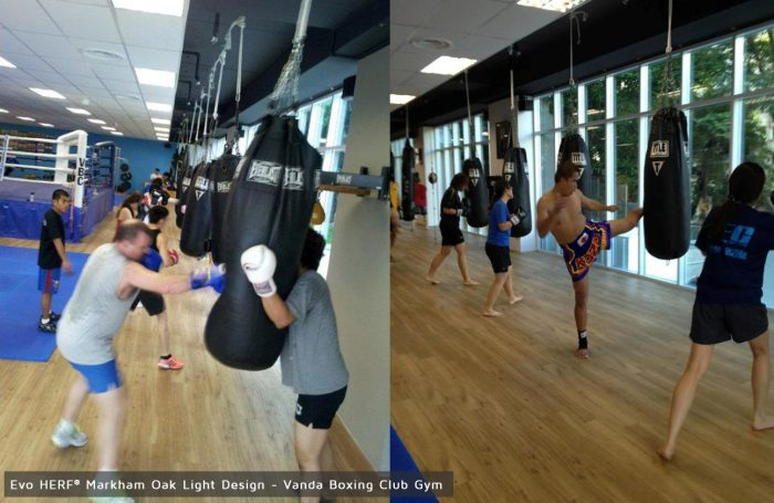 Vanda-Boxing-Club-Gym-Markham-Oak-Light