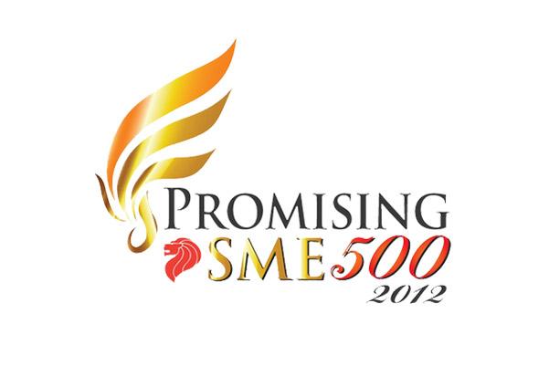 PROMISING SME 500 (AWARDED, 2012)